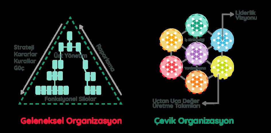 Çevik Organizasyon