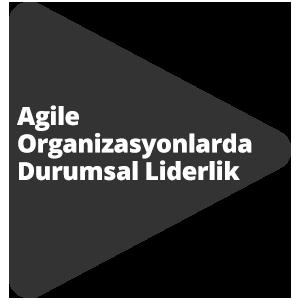 Agile Organizasyonlarda Durumsal Liderlik