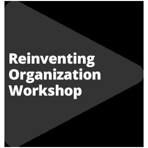 Reinventing Organization Workshop